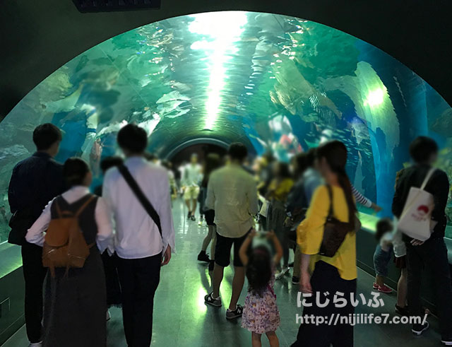 水族館_水槽トンネル