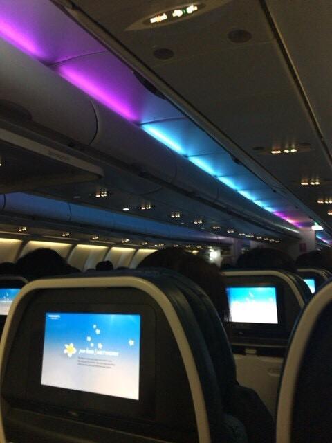 ハワイアン航空照明