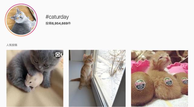 #caturdayとは何?
